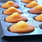 Pour 24 madeleines 3 œufs 120g de sucre 20g de miel ou de sirop d'agave 1 cc de vanille en poudre 150g de farine T55 125g de beurre pommade 5g de levure chimique Une pincée de sel