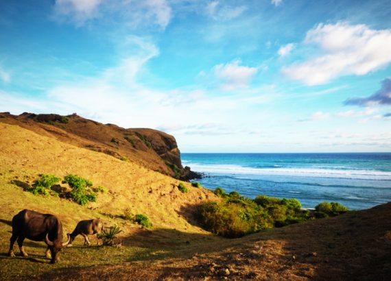 Kuta lombok - Rappelle toi des mets
