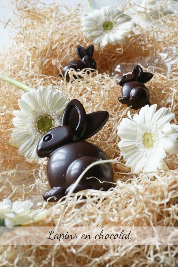 Lapins en chocolat - Rappelle toi des mets